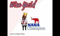 WISA GRIED – NANA CHAMPION ( NPP VICTORY SONG 2016 )