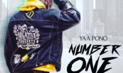 Yaa Pono – No. 1 In Africa (Amendwo) (Prod. By Jay Twist)