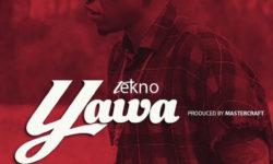 TeKno – Yawa (Prod By MasterKraft)
