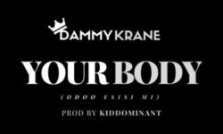 Dammy Krane – Your Body (Odoo Esisi Mi) CDQ