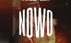 [New Song] NAIJA ALERT : DJ Spinall ft Wizkid – Nowo CDQ