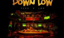 NAIJA ALERT : Dammy Krane Ft. Ycee X L.A.X – Down Low CDQ