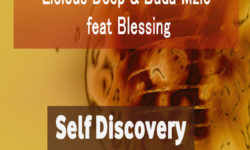 SOULFUL HOUSE ALERT : Licious Deep & Buda Mzie feat. Blessing – Self Discovery (Original Mix) CDQ