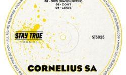 DEEP HOUSE ALERT : Cornelius SA – Now (Dwson Remix) CDQ