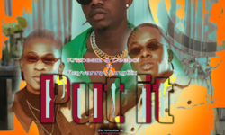 Tanzania X Naija Alert : Krizbeatz ft Rayvanny & Yung6ix – Put it (Prod. by Krizbeatz) CDQ