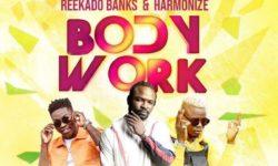 Tanzania X Naija Alert : Young D Ft Reekado Banks & Harmonize – Body Work