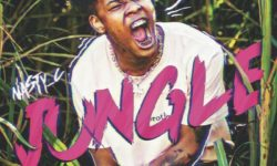 AFRICAN HIPHOP : NASTY C – JUNGLE CDQ