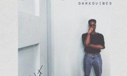 Afrobeats Alert : DarkoVibes – Shuga (Prod. by Vacs) CDQ