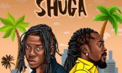 Ghana Jamaica Alert : StoneBwoy ft. Beenie Man – Shuga CDQ