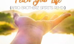 AfroHouse Alert : Prince Kaybee, Msaki – Fetch Your Life (Afro Brotherz Spirits Remix) HQ