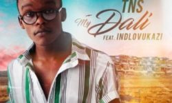 S.A. HOUSE ALERT : TNS ft iNdlovukazi – My Dali (Prod by TNS) (Original Mix) HQ